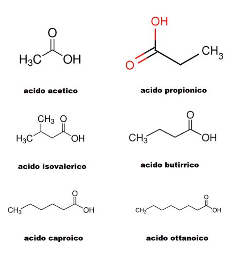 molecole maleodoranti