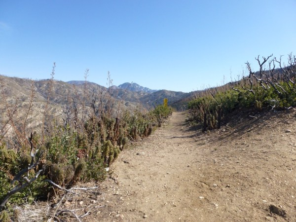 Silver Moccasin Trail from Angeles Crest to Charlton Flats