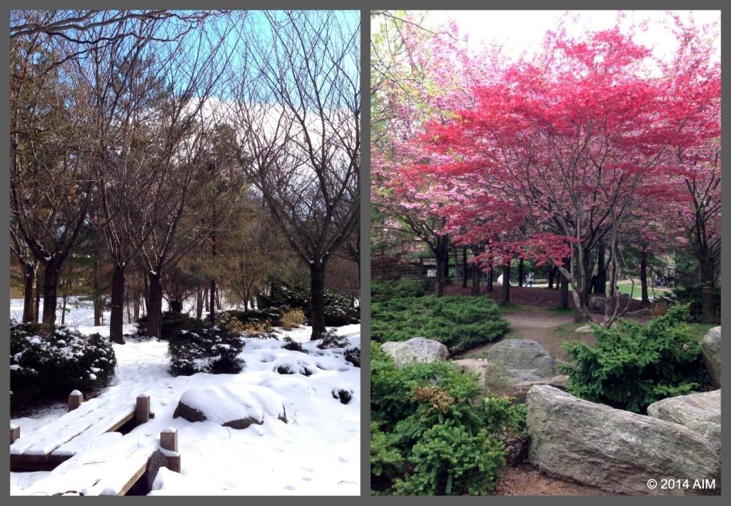 Kariya Park winter AIM pic2