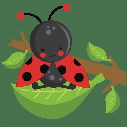 ladybug leaf svg scrapbook cut