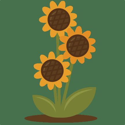 sunflower svg files scrapbooking