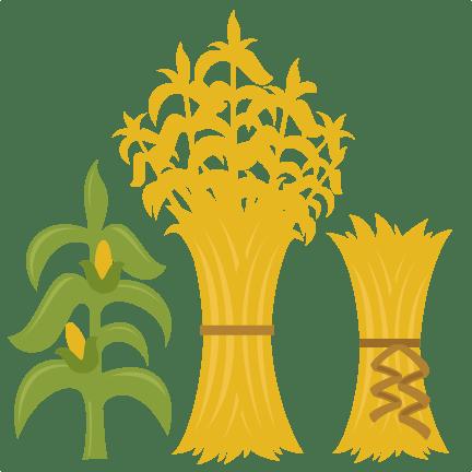 corn stalks svg cutting files
