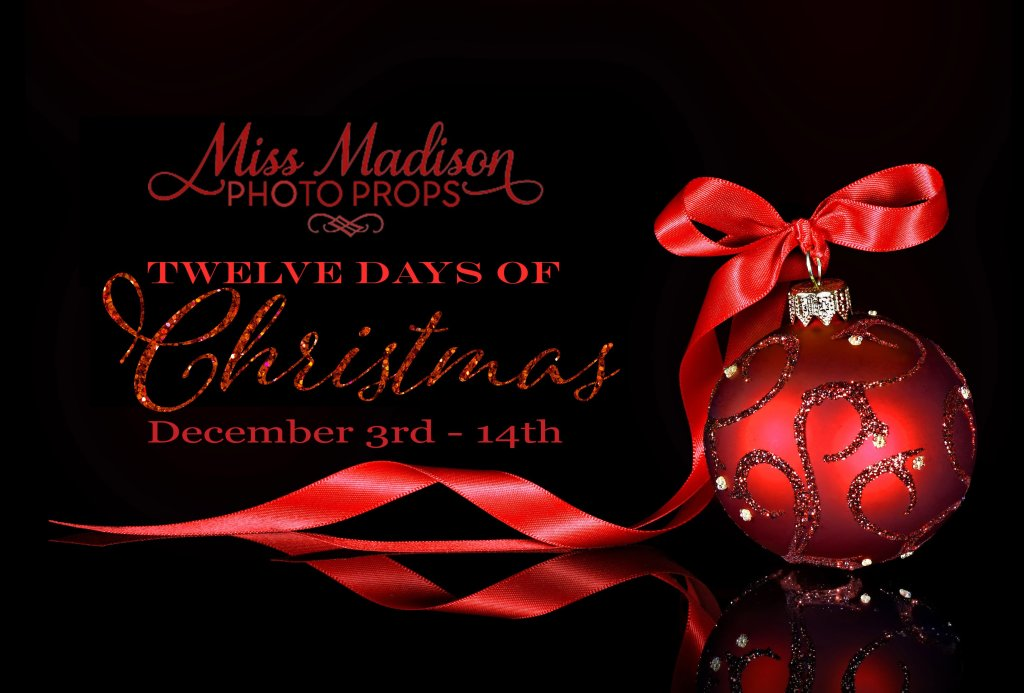 12 Days of Christmas Sale Promotion