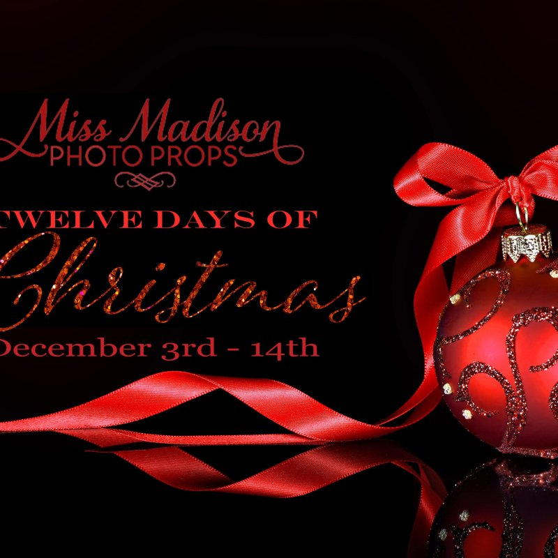 Miss Madison 12 Days of Christmas!