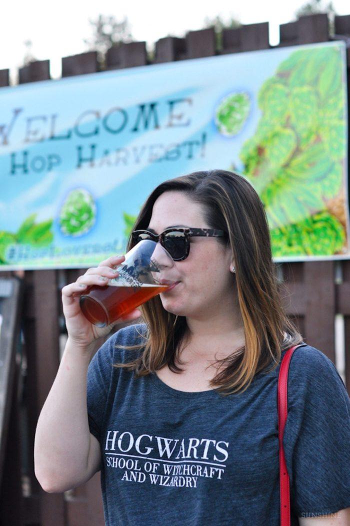 Local Love: Terrapin Beer Co.
