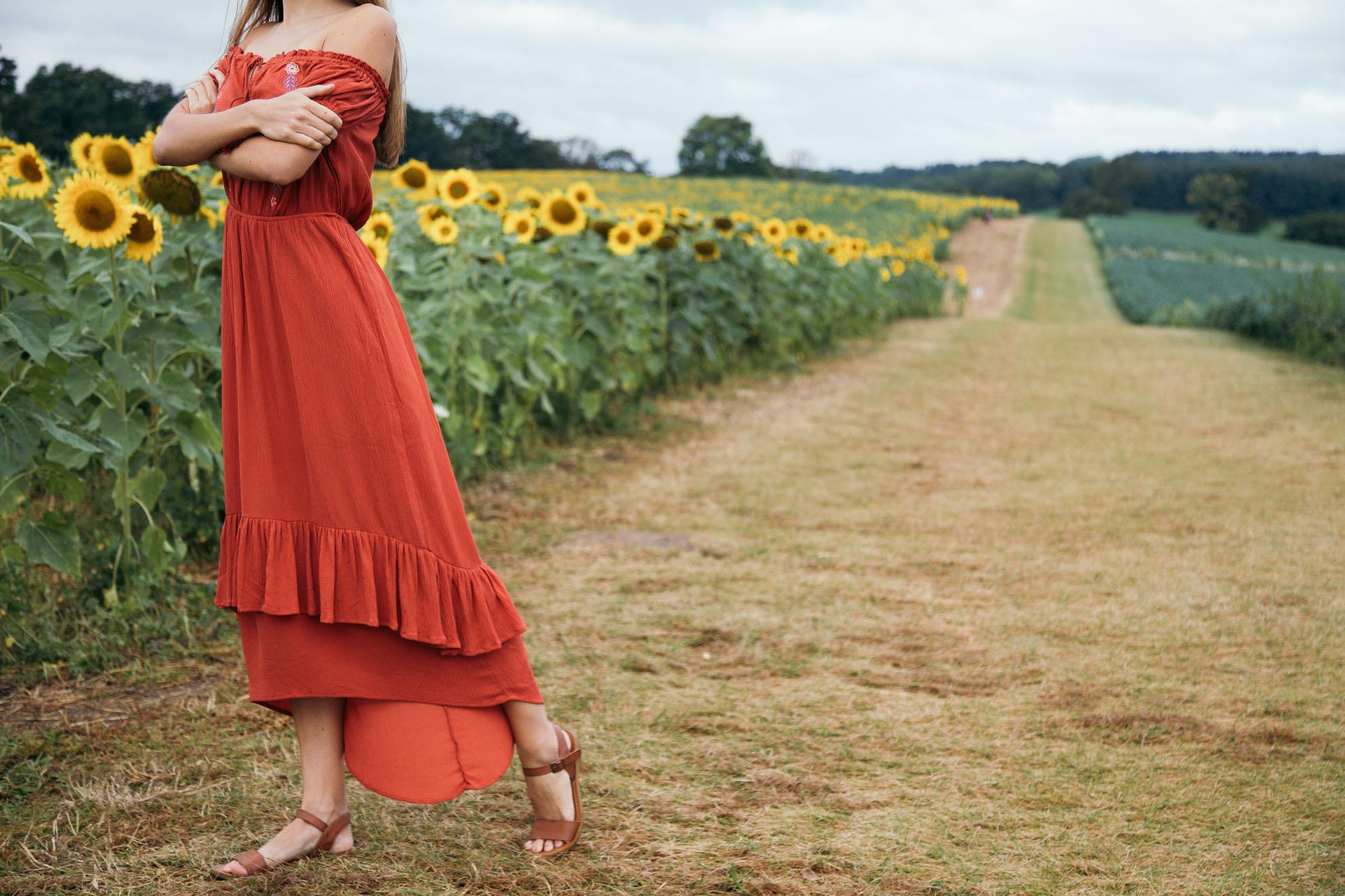 Sunflower Farm in Wisconsin | Miss Northerner
