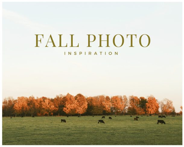 fall photo inspiration