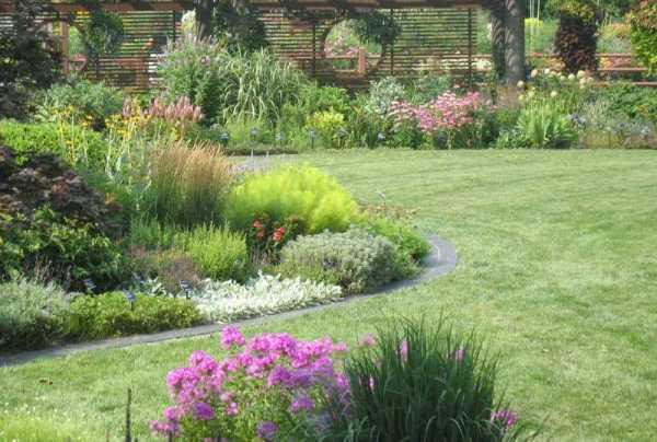 lawn landscape & garden design