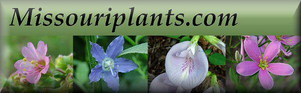 Missouriplants.com