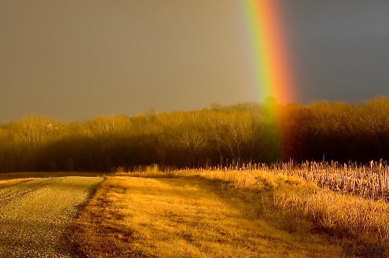 a rainbow rarrrr!