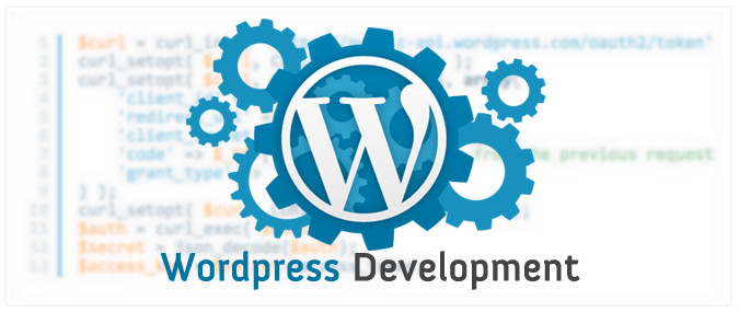 developpement-wordpress-expert