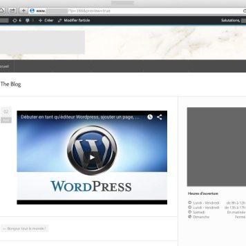 WordPress a créé le code d'embed pour nous !