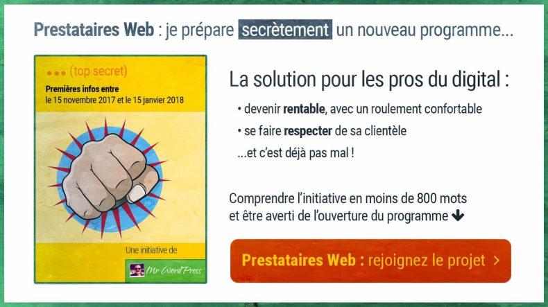 Conviértase en un proveedor de servicios web respetado y rentable