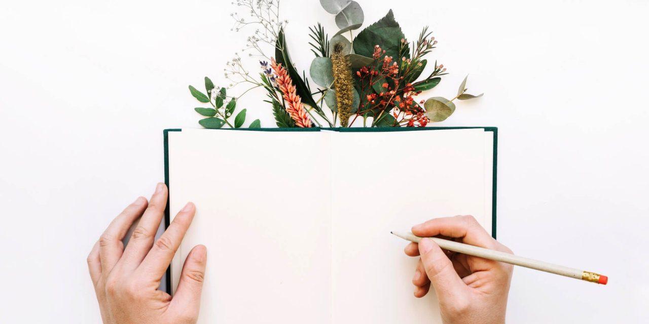 Comment avoir du contenu gratuit et de qualité sur son blog WordPress?