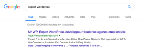 expert wordpress
