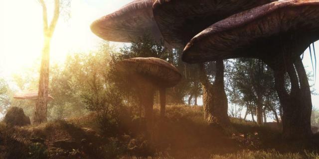 Screenshot Skyrim dans Morrowind