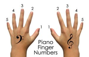 thumbnail of Piano Finger Numbers