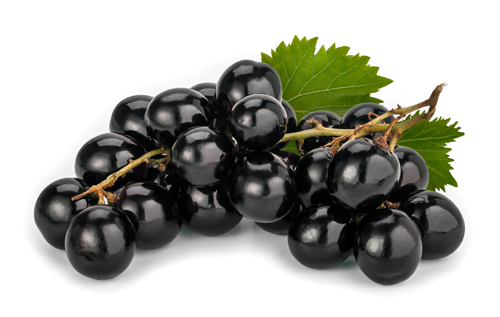 MUSCAT GRAPES – Mister Produce