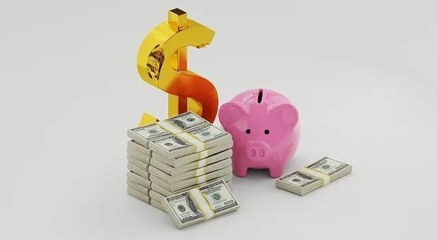 Pink Piggy Bank and cash