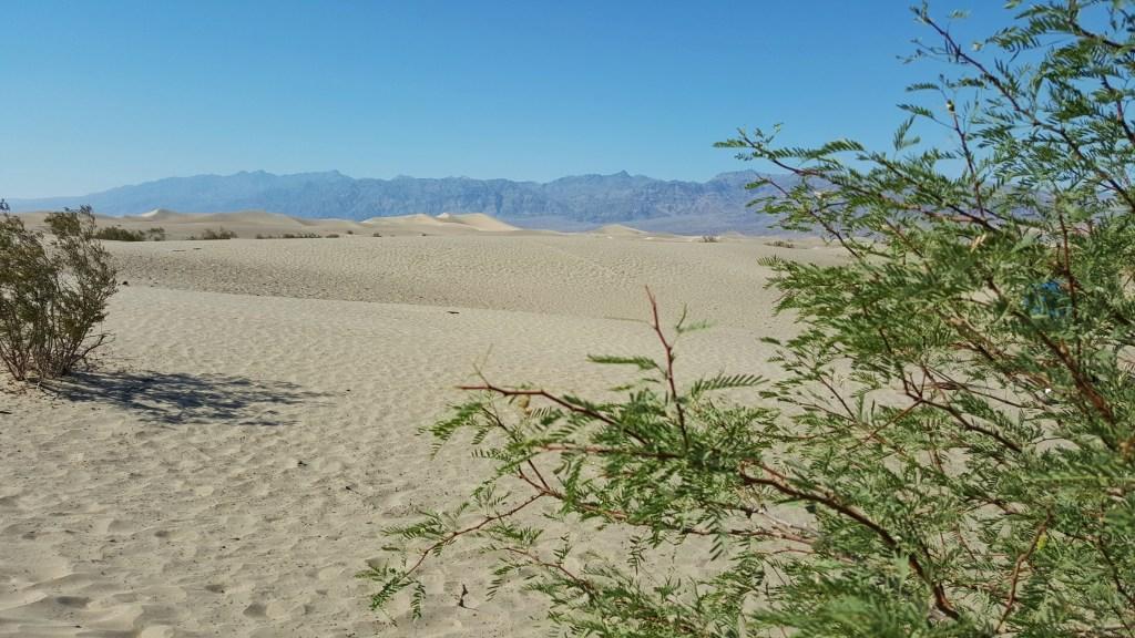 Boah, voll die Wüste hier…. !! :) Und mit diesem Bild verabschieden wir uns aus dem Death Valley. Unser Ziel ist nun das kleine Städtchen Bishop, in dem wir auch übernachten werden.