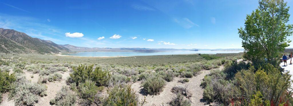 Der Mono Lake ist ein Natronsee; er ist also sowohl besonders alkalisch als auch besonders salzhaltig. Er liegt in Mono County im zentral-östlichen Teil von Kalifornien, in einem abflusslosen Becken am Westrand des Großen Beckens unter der Ostflanke der Sierra Nevada. Wegen der harschen Umweltbedingungen müssen Tiere und Pflanzen sowohl an den hohen pH-Wert angepasst sein als auch den Salzgehalt ertragen können. Daher hat sich ein Ökosystem aus sehr wenigen angepassten Arten bei sehr hoher Individuenzahl entwickelt, das für einige Vogelarten von besonderer Bedeutung ist.