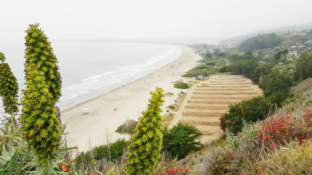 Stinson Beach - 20 Meilen nördlich von San Francisco ist wie der Schritt in eine andere Welt. Viel Natur, kleine Küstenstraßen und mal eine tolle Abwechslung zum Trubel in der Stadt. Ein süsser kleiner Badeort mit einem 4 Kilometer langen Sandstrand. Herrlich.