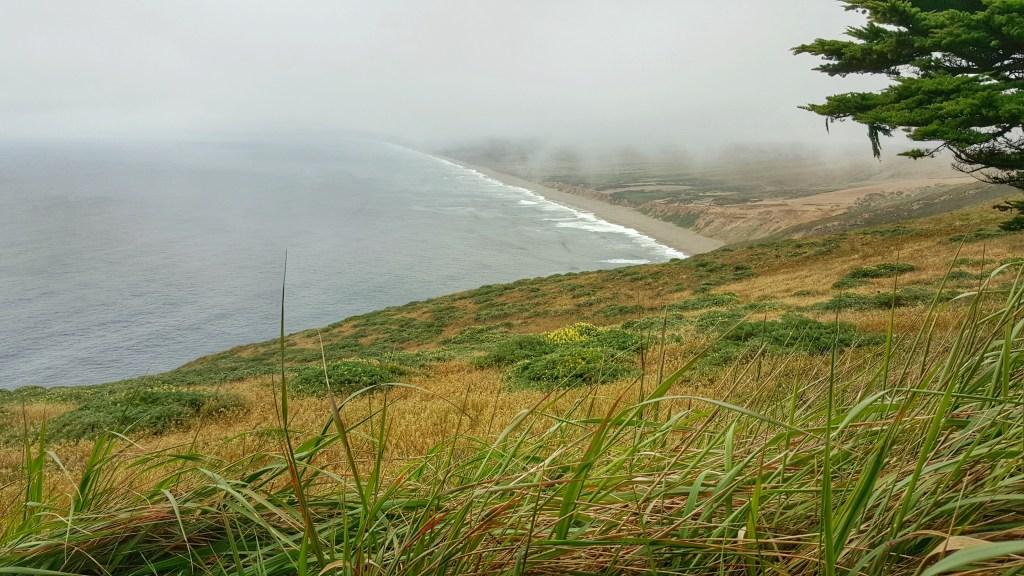 Nördlich von Point Reyes erblickt man nur Natur und einen kilometerlangen Sandstrand.