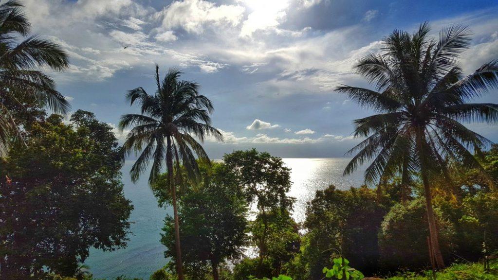 Und immer diese Palmen, das Meer, die Sonne und die Wärme…. und das Ende November… der Hammer!!!