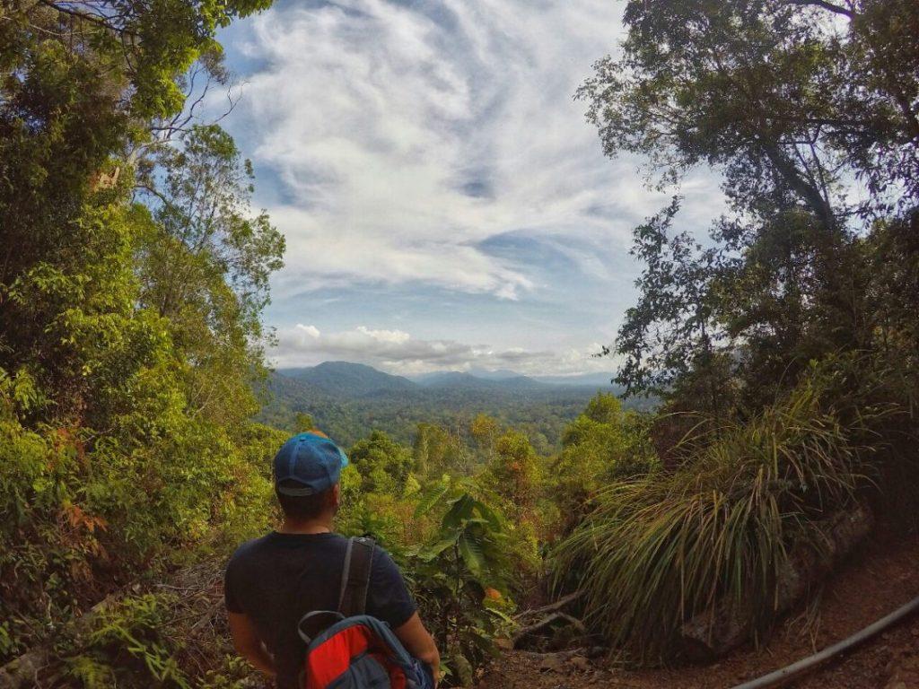 Eins meiner Lieblingsbilder. Gedankenversunken blicke ich in die Ferne. Ein erhabenes Gefühl. Der Olli im Regenwald. Hier fühlt sich der Mensch auf jeden Fall ziemlich klein.