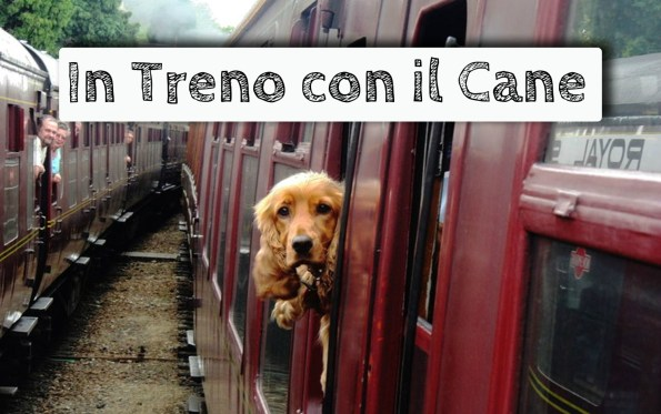 il-cane-si-piò-portare-in-treno-copertina