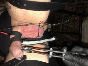 Cock and ball torture by Leeds Mistress Firefly.