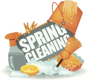 Spring Cleaning Tips Misty Clean