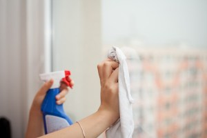 Professional Housekeeper Benefits Misty Clean