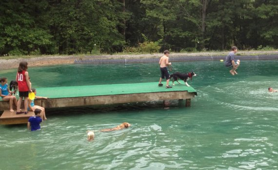 Summer Fun at Misty Pines