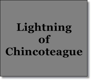 Lightning of Chincoteague-Misty's Heaven