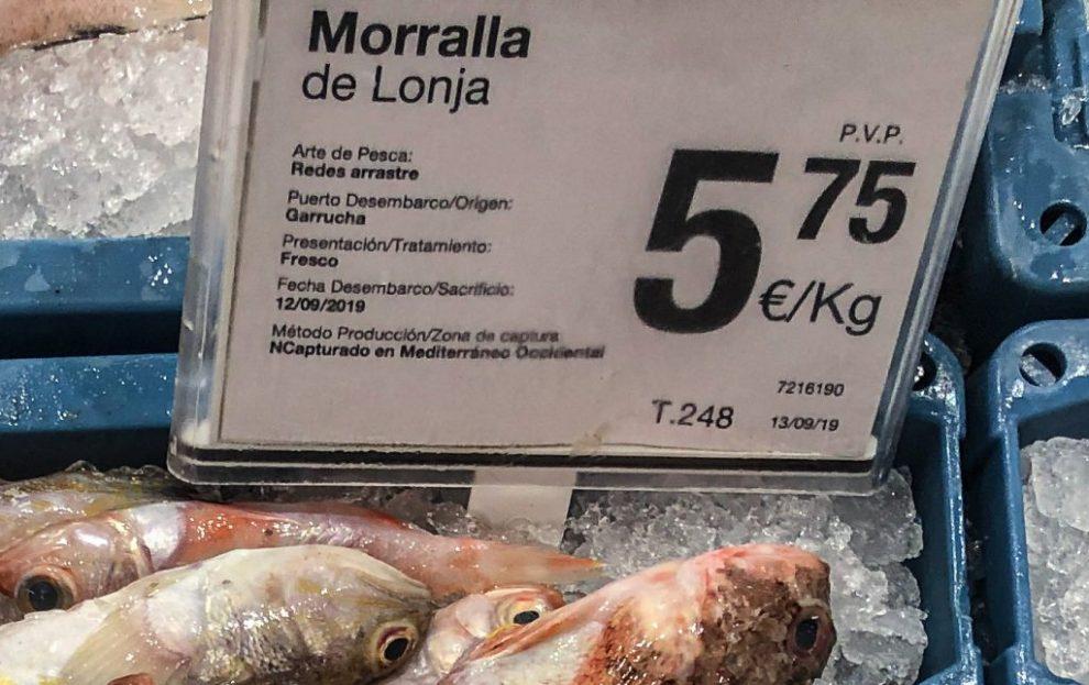 Hier kommt der Fisch her