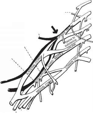 C6 C7 Location C5 6 Location Wiring Diagram ~ Odicis
