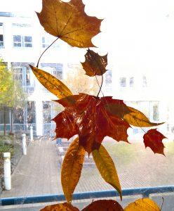 Linas Blättermännchen am fester.