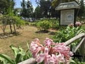 A cemetery ... let me die here