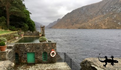 Glenveagh National Park ... and yes, you can chance the pool ...