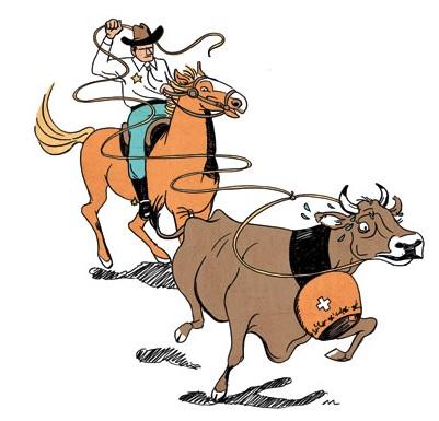 USA Rodeo Recht
