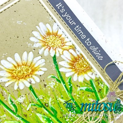 colour the new Daisy Lane stamp set to create a master piece