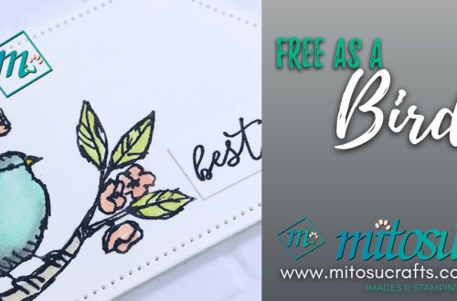 Free As A Bird Card Ideas for Stamp Review Crew from Mitosu Crafts