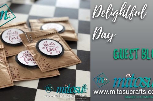Use the Delightful Day Stamp Set to make these pretty pressies