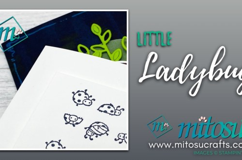 Little Ladybug Card Ideas for Stamp Review Crew from Mitosu Crafts