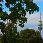 """""""Gerade die Landeshauptstadt München ist verpflichtet, Versammlungen mit rechtsextremistischen Tendenzen an symbolträchtigen, historisch belasteten Orten zu verhindern. Dies gilt in besonderer Weise auch an symbolträchtigen Tagen wie dem 9. November, dem Tag der Reichspogromnacht, die in München ihren Ausgangspunkt hatte."""""""