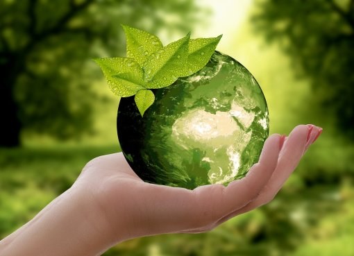 Nachhaltigkeitsbenchmarking Foto