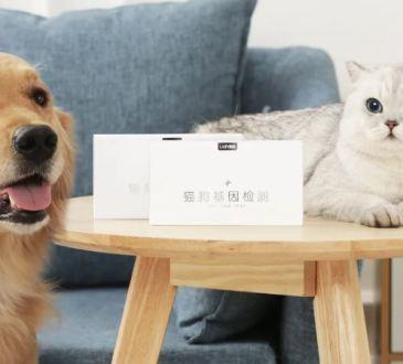 Xiaomi test del DNA cani e gatti