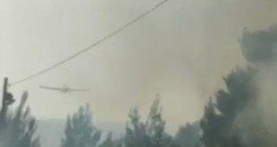 """אדורה - תושבי היישוב שנמצא במחוז יו""""ש פונו..."""