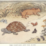 Story Time 09: The Tortoise And The Hare